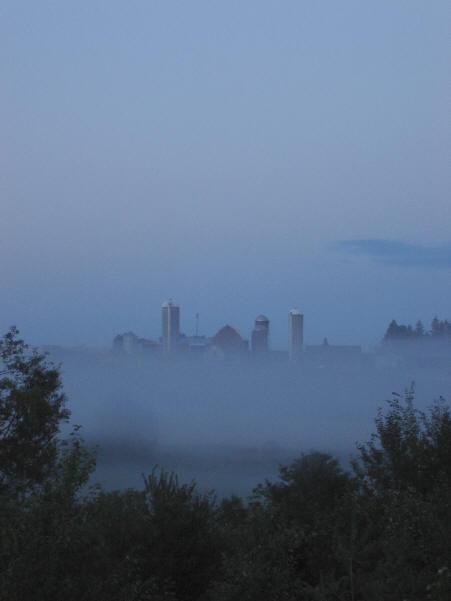 Misty Acres