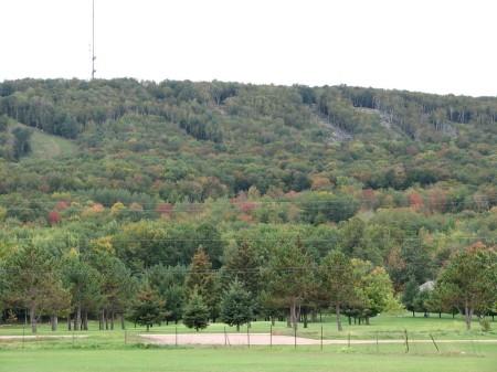 Sept 19 Leaf-o-Meter